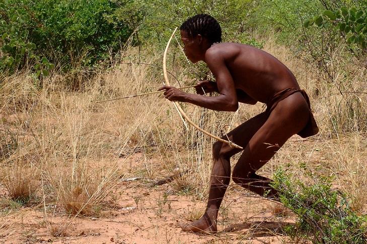 Bushmen chassant