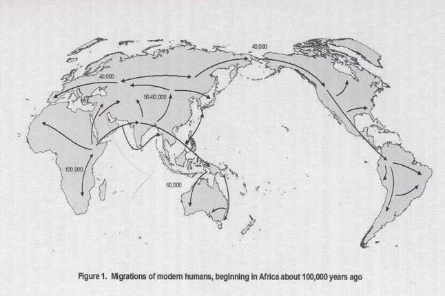 big migrations homo sapiens